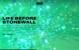 diseño web Stonewall